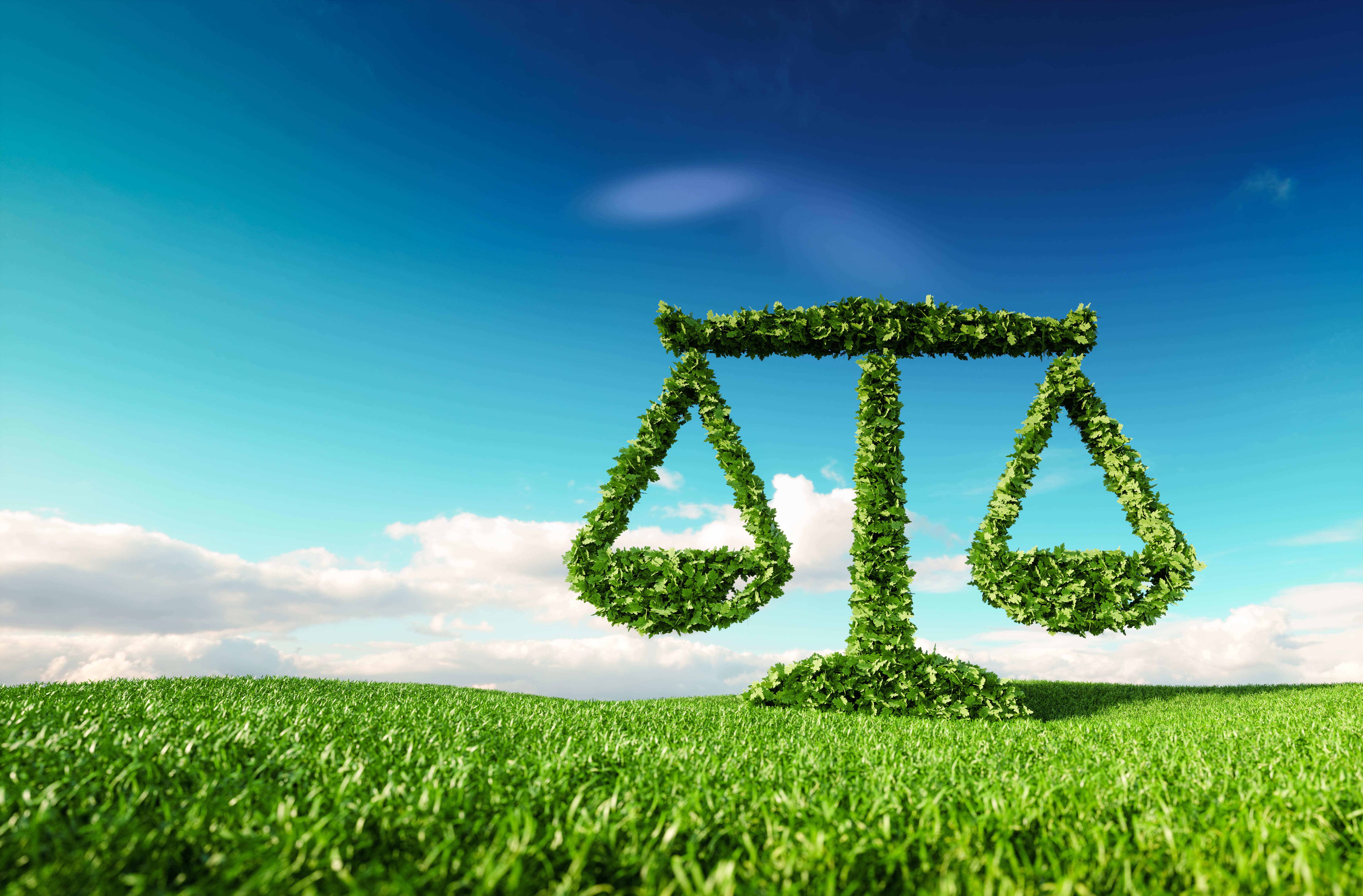 Nachhaltigkeit_4.jpg#asset:873